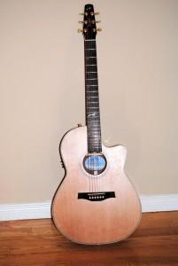 Guitare Seagull, Artist Series de Godin